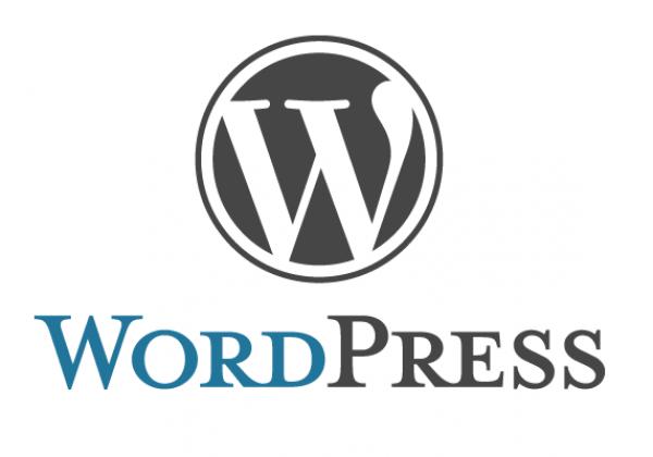 גם ב2014 בוחרים אתר וורדרפס